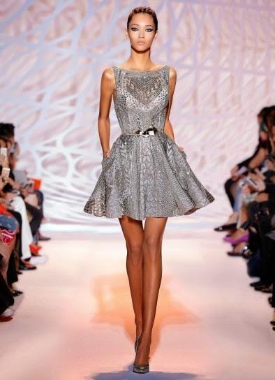 Collezione Zuhair Murad 2015 abiti da cerimonia  Minidress in argento f49c7239732