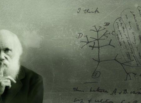 Accadde Oggi Charles Darwin scienziato osservatore razionale muore 19 aprile 1882 Biografia