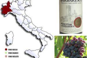 Barbaresco elegante vino pregiato piemontese caratteristiche abbinamento cibo