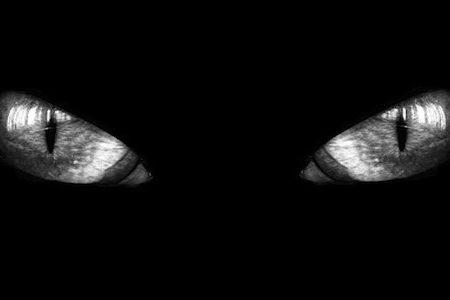 Audiolibro Il Gatto Nero di Edgar Allan Poe