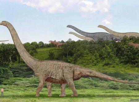 Paleontologia quale il più gigantesco dinosauro vissuto sulla Terra?