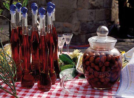 Giuggiolo frutto antico riscoperto ricetta liquore di giuggiole