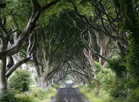 Irlanda passeggiando tra cielo e mare nell'isola verde