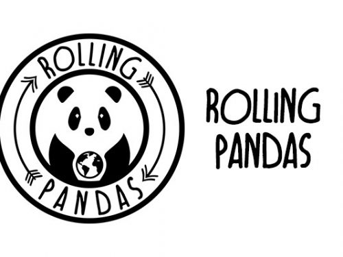 Rolling Pandas intervista VerosimilmenteVero