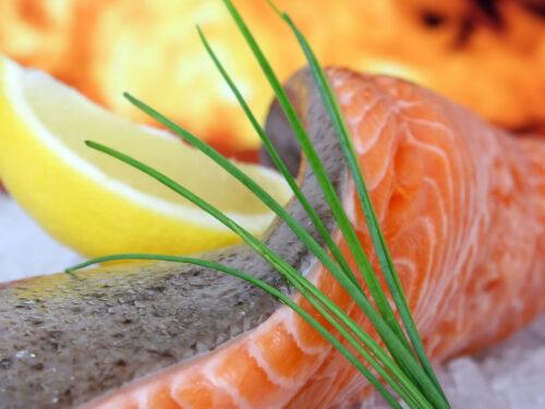 Il salmone ottimo e nutriente